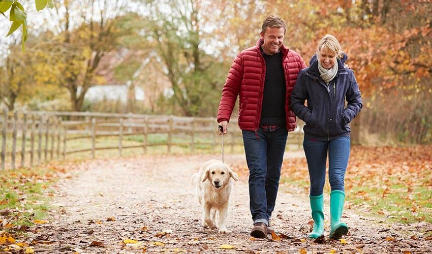 Couple walking in a trail with dog during fall season.